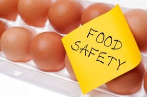 Food Safety Eggs