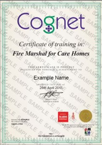 Cognet E-Learning Sample Certificate
