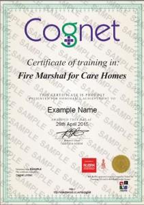Cognet E-Learning Sample Certificate